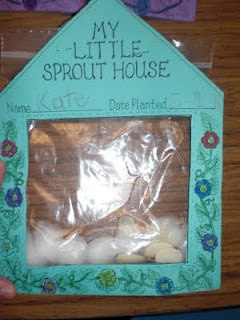 Put soaked seeds into a ziploc bag with moist cotton balls.  Attach to paper 'Sprout House'.  Tape up in a window, and watch each day as it sprouts.  Cute idea :)