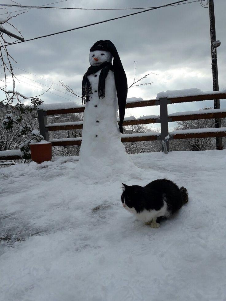 Snowman ⛄ & the cat 😻.