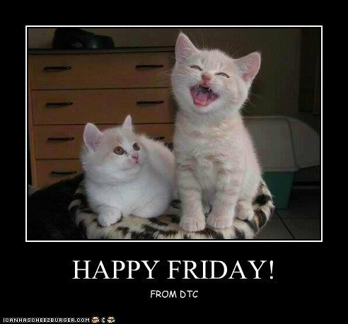 17 Best images about Happy Friday Fur Babies! on Pinterest ...
