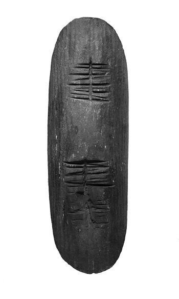 Shield kutitje, Walpiri, prior to 1912.  Shield kutitje; Bean tree wood (Erythrina vespertilio), ocre; Walpiri, prior to 1912; l 62 cm, w 20 cm; Coll. Liebler.  Photo: U. Didoni