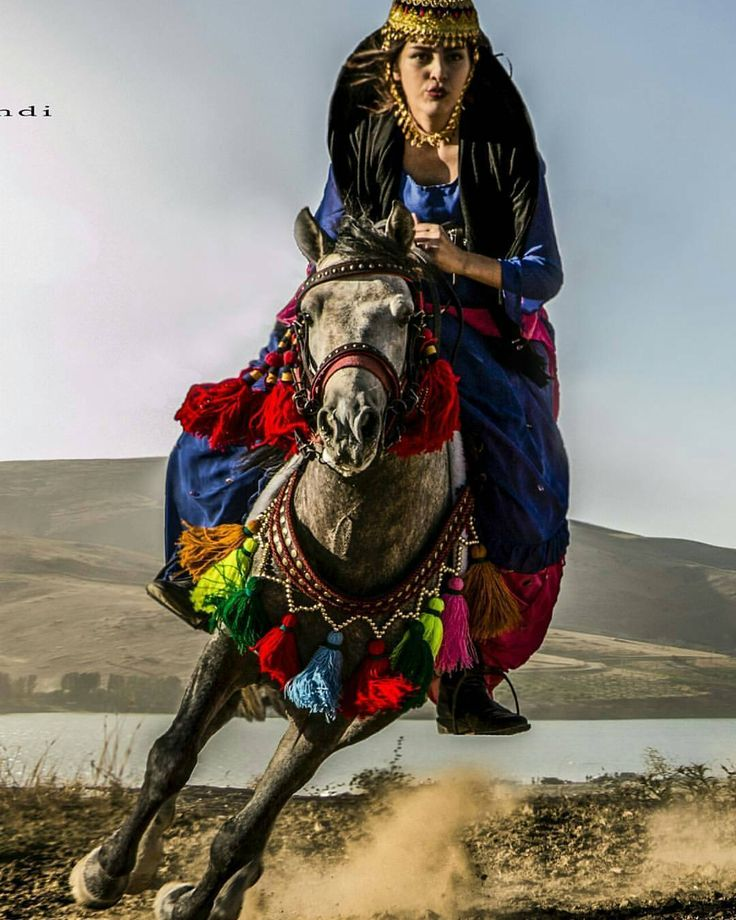 Kurdish Woman in traditional Costume on a magnificent decorated Horse. So pretty.