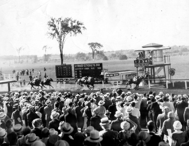 a history of the thoroughbred The australian racing museum and hall of fame is dedicated to telling the stories of thoroughbred racing in australia and preserving the rich history of the sport of kings.