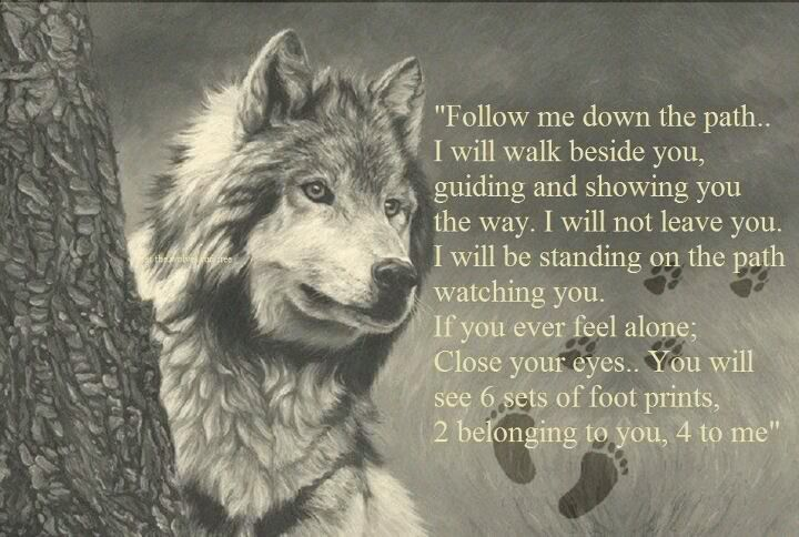 Mother wolf - Thank you for acceptance, strength and protection.                                                                                                                                                                                 More