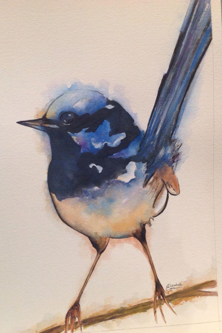Superb Blue Wren, Watercolour, Elizabeth Little