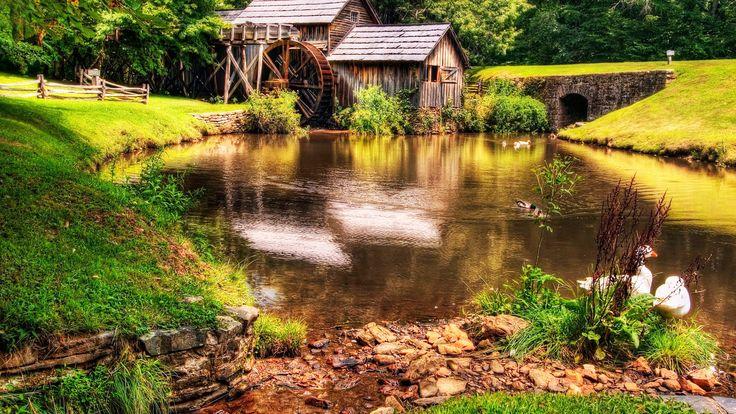 beautiful farm lake cottage ducks wallpapers