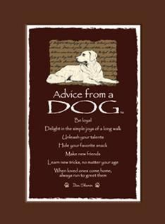 Advice from a Dog