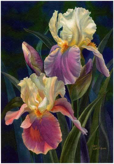 Reiko Hervin Watercolor - Gardening Prof