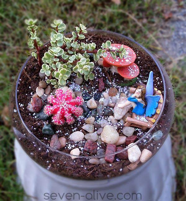 Fairy Garden Ideas For Small Spaces best 20+ fairy terrarium ideas on pinterest | terrarium, terrarium