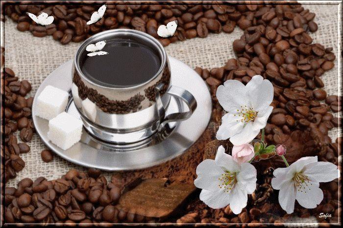 Анимация кофе и шоколад