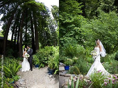 Bell Hallow Weddings In The Woods Santa Cruz Mountains Reception Venues 95005 Here Comes