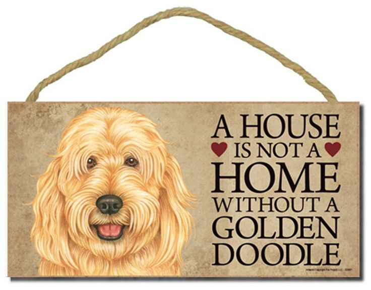 Goldendoodle 'A house is not a home without a Goldendoodle' - 5' x 10' Door Sign with Bonus 1pc Stand and 'I Love My Dog' 3 Inch Round Decal -- Check out the image by visiting the link. (This is an affiliate link and I receive a commission for the sales)