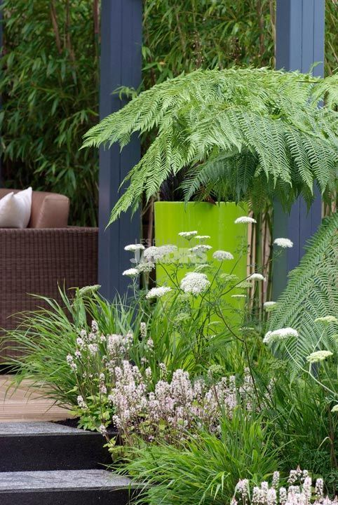 1000 images about jardin on pinterest coins petite piscine and tropical. Black Bedroom Furniture Sets. Home Design Ideas