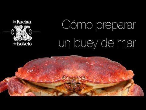 C mo preparar un buey de mar video recetas de platos j - Como cocinar un buey de mar ...