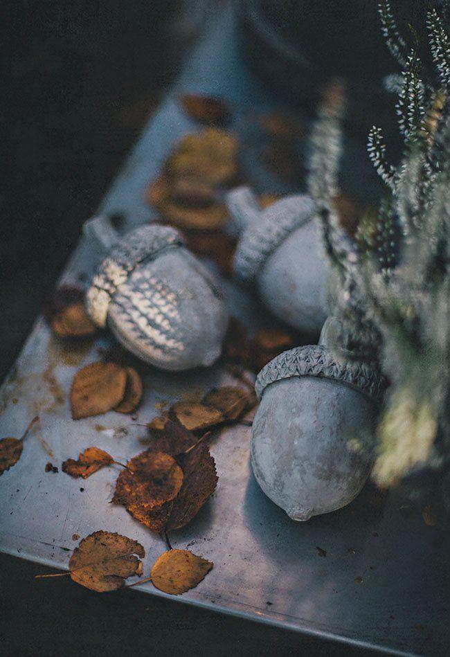 zinc acorns