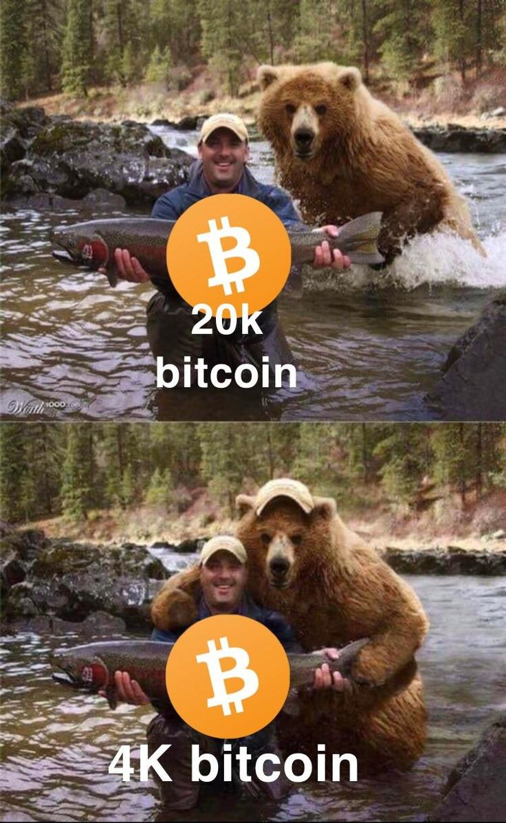 Caption this Bitcoin, Animals, Captions