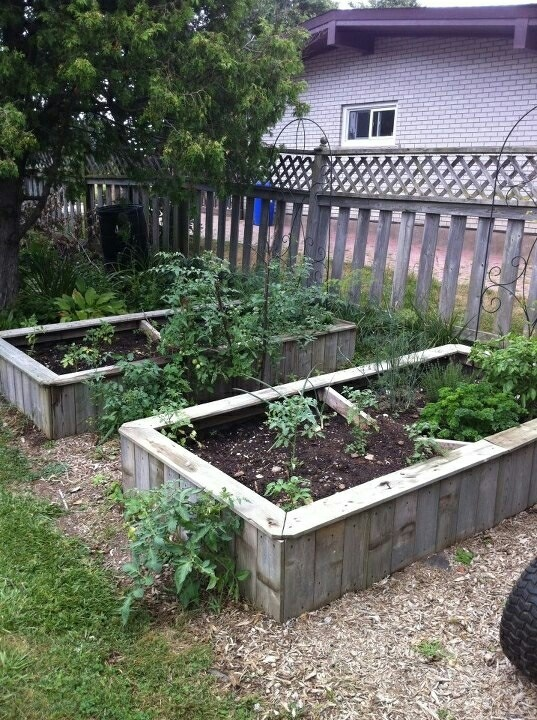 36 Best Raised Ranch Renovation Images On Pinterest: 111 Best Images About Raised Garden Beds On Pinterest