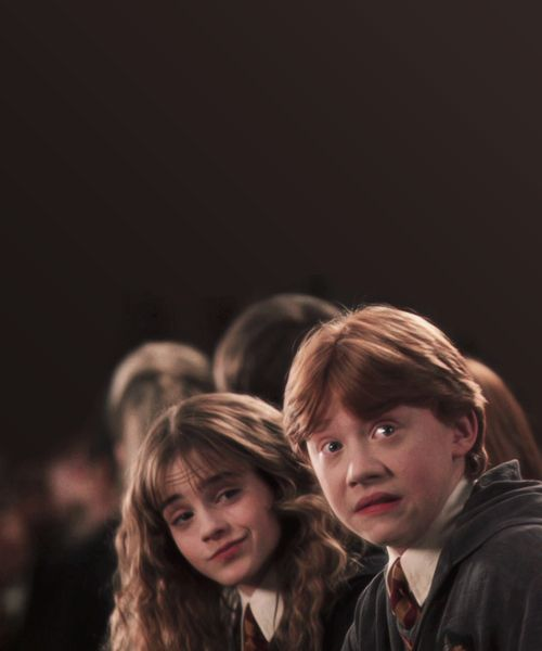 Hermione Granger and Ron Weasley - Harry Potter