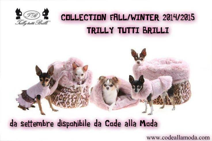 Collezione A/I 2014-2015 Trilly tutti Brilli