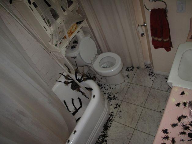 halloween bathroom decor. 207 best Halloween  Bathroom Decor images on Pinterest 2017 bathroom and ideas