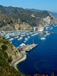 catalina island, california  Used to spend New Years Eve there for many years...so much fun and great memories!