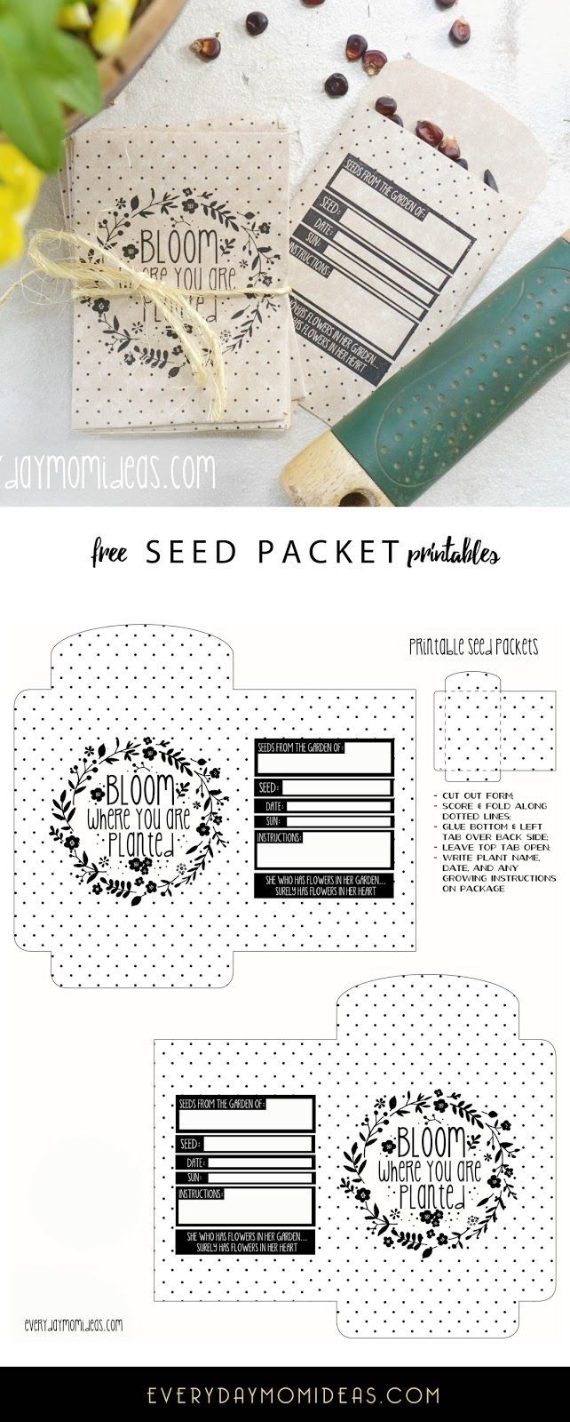 50+ best Seeds images by Jennifer Mogan on Pinterest | Envelopes ...