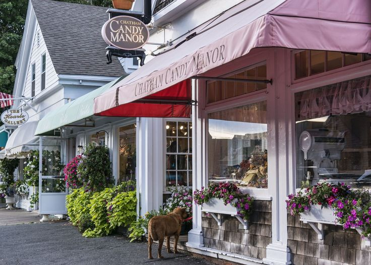 Best 25 cape cod homes ideas on pinterest for Townandcountrymag com customer service