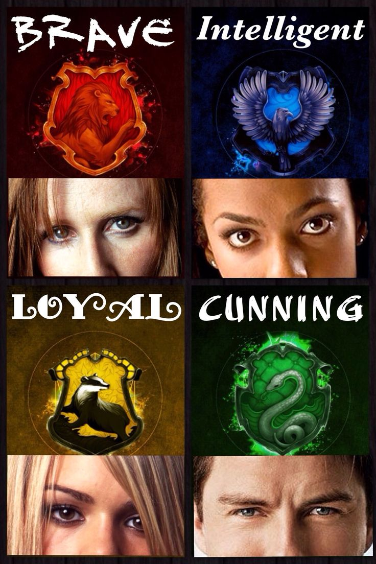 Brave, Intelligent, Loyal, Cunning ~The Companions Pt. 1