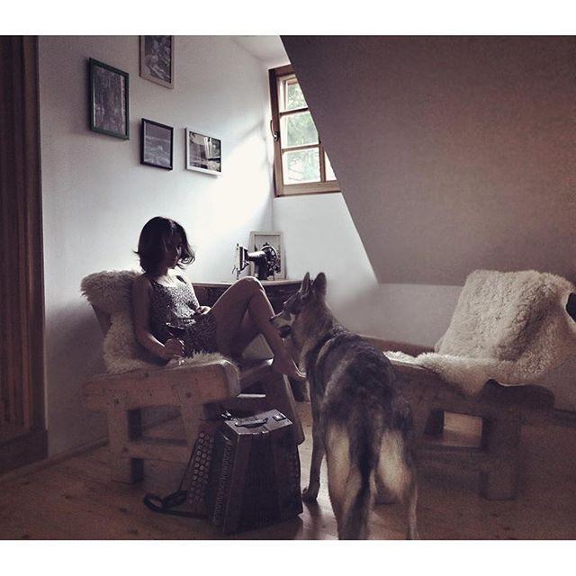 We arrived.. Greetings from a place we'd love to call home   #travelwithmaya #hikingwithdogs #stayandwander #roamtheplanet #LF10K #folkgood #folkvibe #mobilemag #wolfdog #exklusive_shot #czechoslovakianwolfdog #lifeofadventure #adventurethatisli