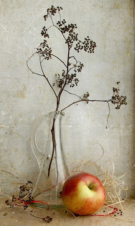 #still #life #photography • photo: ***** | photographer: Юлия Тельес | WWW.PHOTODOM.COM