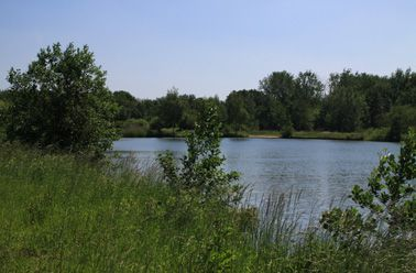 De Karperhoeve - Tine's Lake - Tine's Lake is the carp and sturgeon action lake at the De Karperhoeve estate and about 4.5 acres in size. In the winter of 2013, no expenses were spa... Check more at http://carpfishinglakes.com/item/de-karperhoeve-tines-lake/