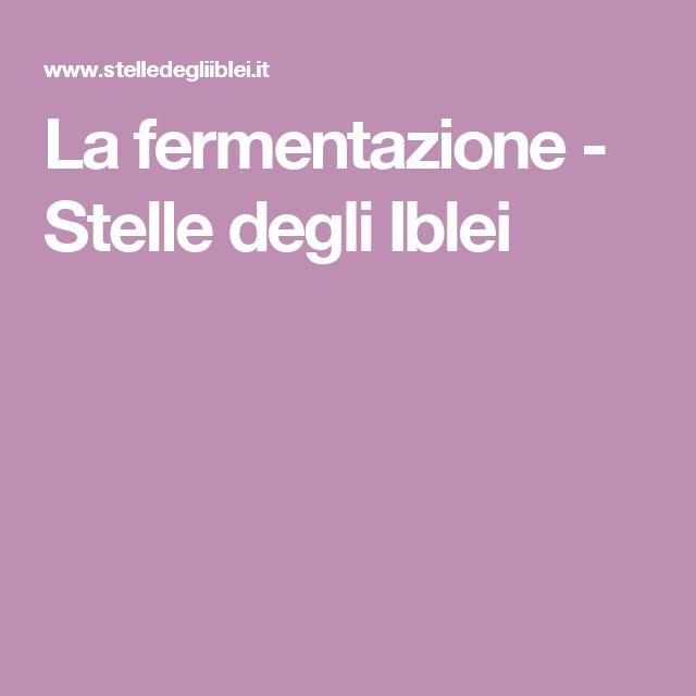 La fermentazione - Stelle degli Iblei