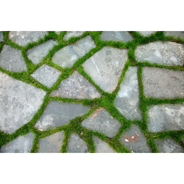 71 Best Crazy Paving Images On Pinterest