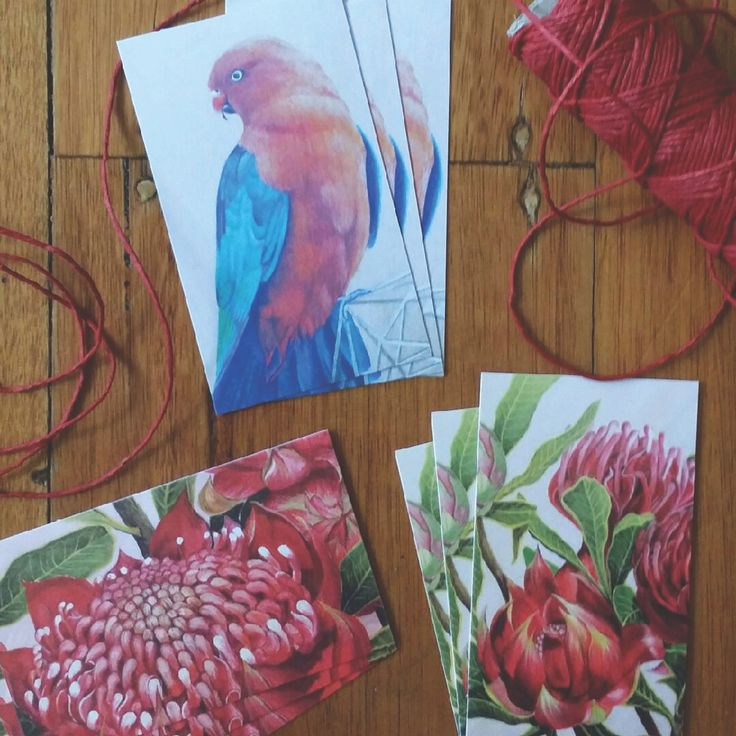 Nine small gift cards featuring three different artworks including Felicity's waratah and King Parrot painting.The gift card pack comes with a length of scarlet hemp twine and nine matching white envelopes. Gift cards are approximately business card size. Very small 'Flosski' logo in grey on reverse side. Merry Christmas!