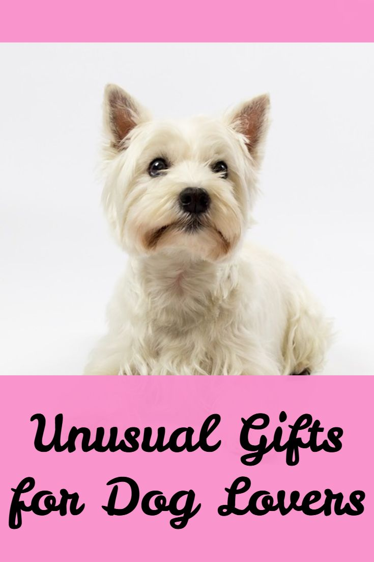 Unusual Gifts for Dog Lovers. Gifts for Dog Owners. Christmas Gifts for Dogs