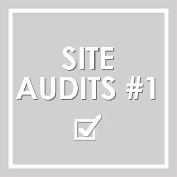 Jim runs through our members' sites  and demonstrates how to conduct an audit.