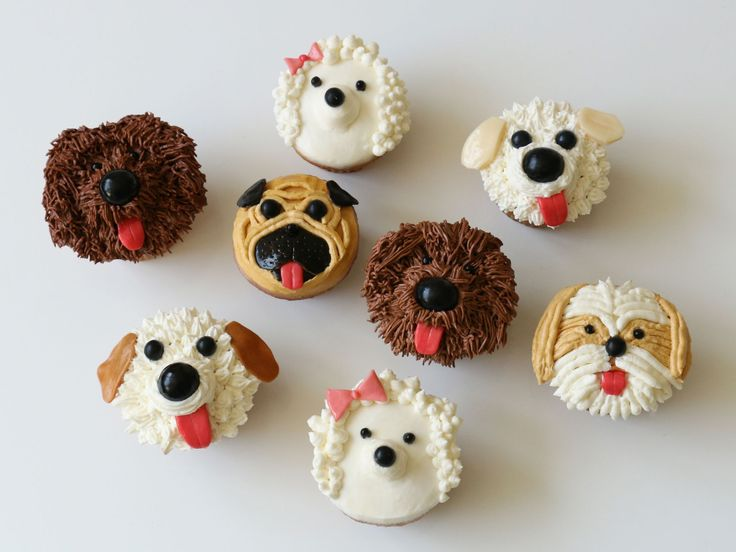 Go Mutts for Pupcakes! : These adorable doggie doppelgangers are created with just a few simple ingredients. All you need is a dozen of your favorite cupcakes, a batch of white buttercream, some easy-to-find candies and a few decorating tools. Follow these simple steps to create shaggy dogs, pugs, shih tzus and more.