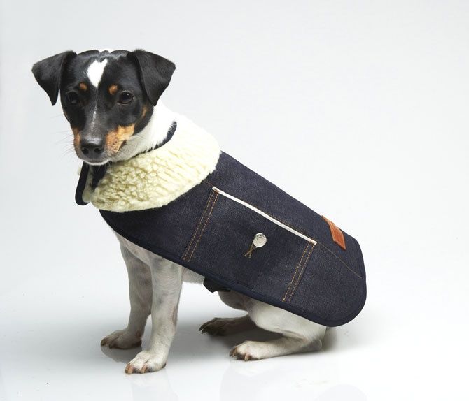 This may be too stylish for my puppies....but this is pretty cool. 'note to self: dog coats'