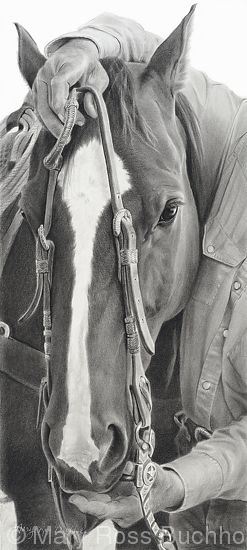 "A Days Start by Mary Ross Buchholz Graphite  Charcoal ~ 19"" x 8.5"""