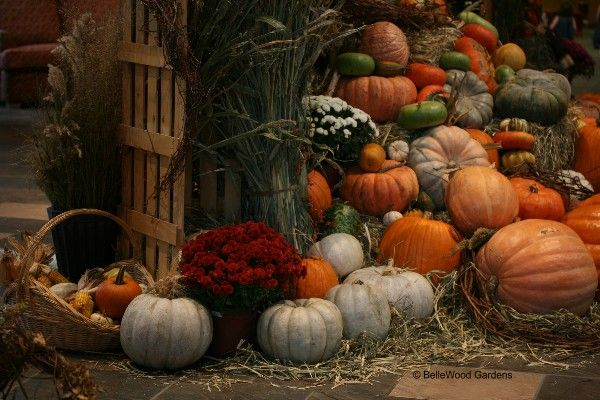 BelleWood-Gardens - Diary   All About Autumn--- Home Decor ...