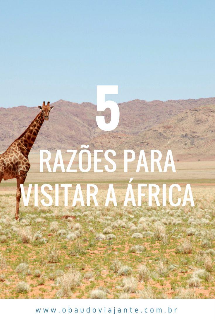 Descubra as belezas da África e por que esse continente tão diverso deve ser o seu próximo destino de férias. Cultura, paisagens fantásticas, safaris, tribos, tudo isso você encontra na África, o coração do mundo.