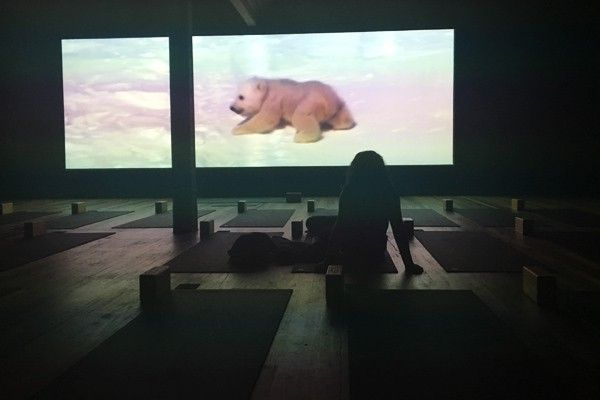 Relax with cubs while doing stretches.. Learn more at frankihobson.com