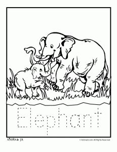 Zoo Animal Coloring Pages: also available are farm animals - all printable
