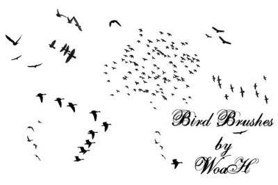 効果を演出できる鳥のシルエットアイデア