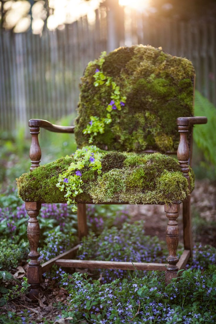 Moss covered chair. One of my favorite creations, to date! *Inspired by this article: http://onekindesign.com/2010/09/05/diy-moss-covered-chair-for-your-garden/ #kimwineyphotography #lepotager #thekitchengarden #moss #chair #lancastercountypa #garden #woodland #fairytale #goldenhour #sunset #creepingjenny #vintage