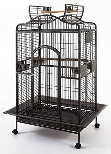 New Large Wrought Iron Open Play Top Parrot Bird Cage For Large Macaws Cockatoos African Grey Amazon - http://www.petsupplyliquidators.com/new-large-wrought-iron-open-play-top-parrot-bird-cage-for-large-macaws-cockatoos-african-grey-amazon/