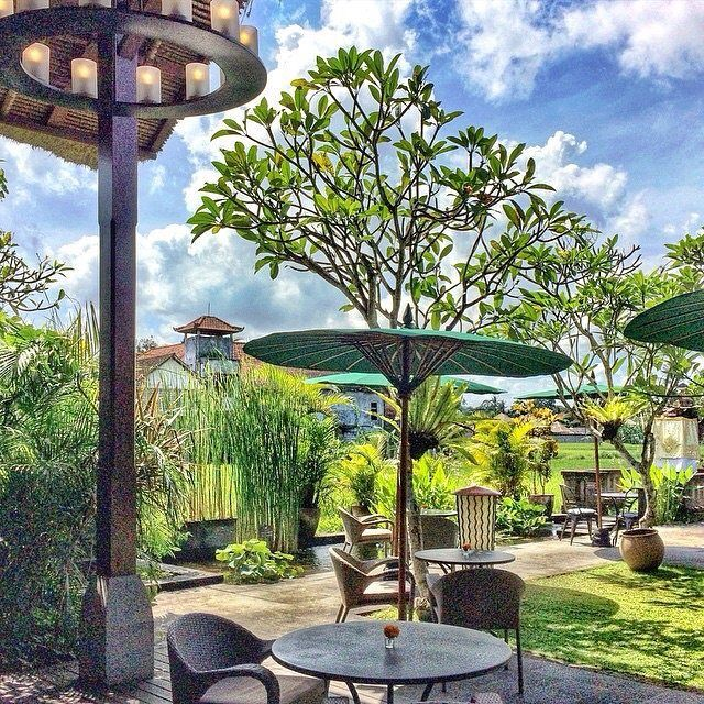 Blend of the blue sky and green garden at our restaurant. Love every moment we spend in here.