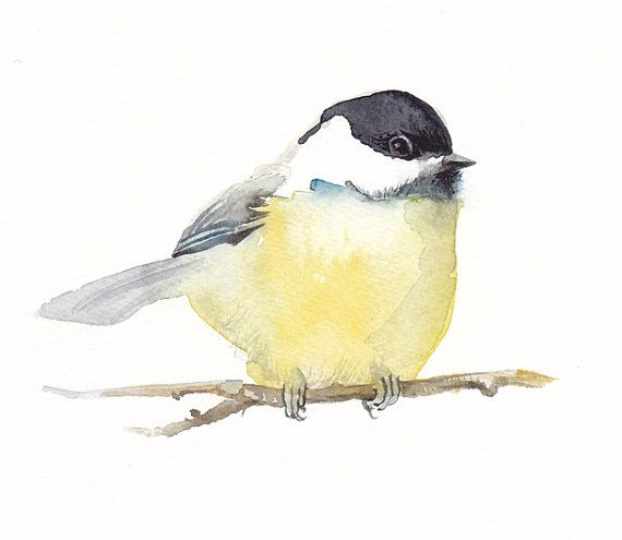CHICKADEE Print Bird Painting Fine Art by VerbruggeWatercolor, $17.00