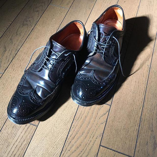 hidenaotakagi #alden #aldenshoes #aldenarmy #オールデン #新宿 #靴磨き #新宿靴磨き #shoecare #shoeshine #shoeshiner #shoestagram #shoeslover #mensshoes #mensstyle #mensfashion #メンズファッション #メンズ #ファッション #紳士靴 #靴 #革靴 #saphir #サフィール #足元くら部 #足元倶楽部 #東京 #理容室 #バーバー#tokyo #nofilter 2017/02/07 18:13:20