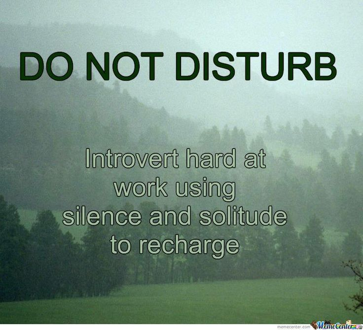 As an introvert, I wish I had this sign for my front door at home and my cubicle at work.