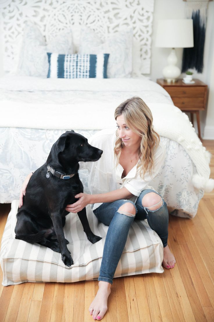 87 best apartment dogs images on pinterest | apartment dog